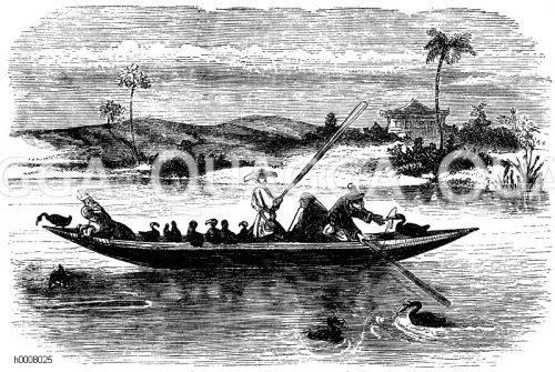 Fischfang, Walfang