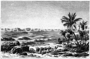 Wüste Sahara (rechts Oase