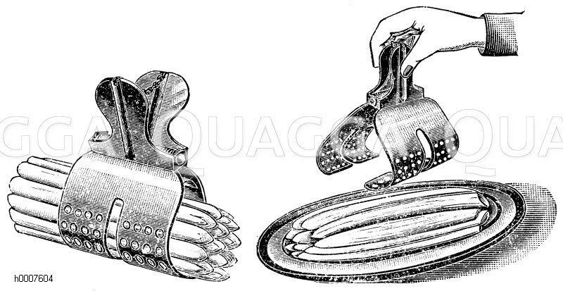 Spargelkocher nach Bordolo-Albondi Zeichnung/Illustration