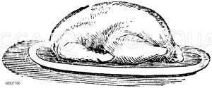 Gebratene Ente Zeichnung/Illustration