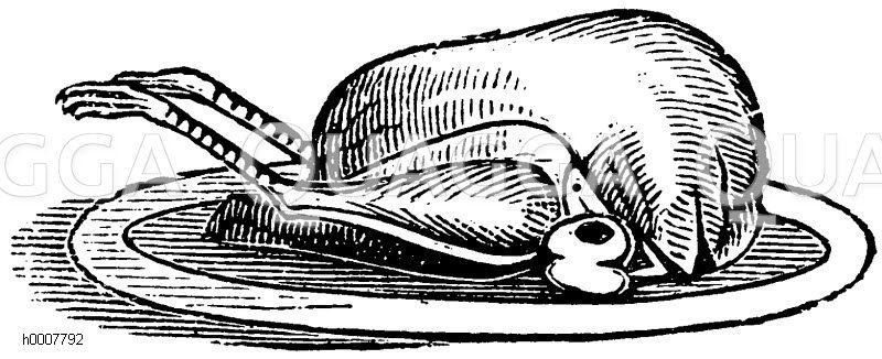 Gebratener Kapaun Zeichnung/Illustration
