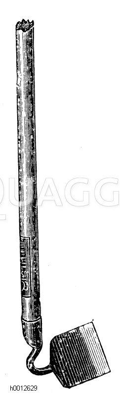 Schwanenhals-Hacke Zeichnung/Illustration