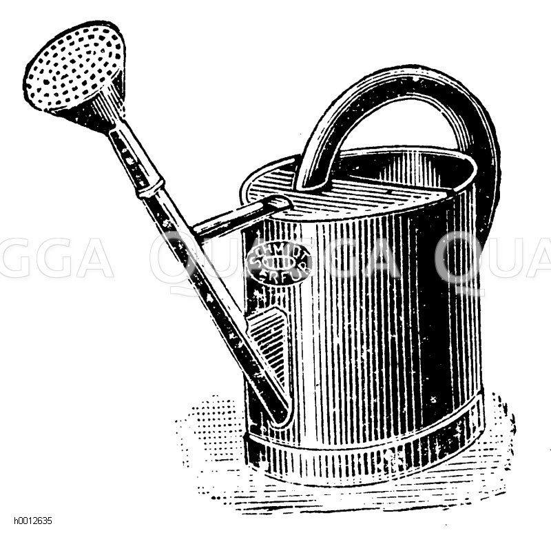 Ovale Gießkanne mit Brause Zeichnung/Illustration