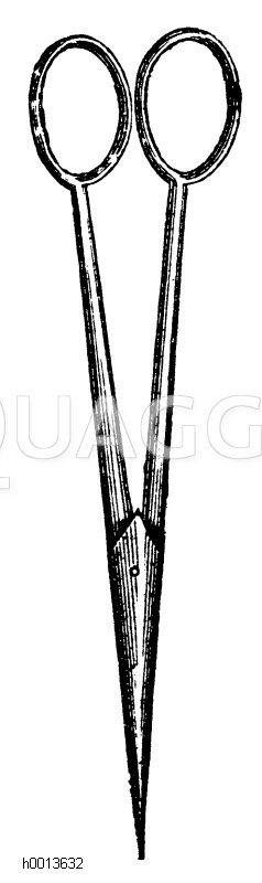 Schere zum Ausbeeren der Weintrauben Zeichnung/Illustration