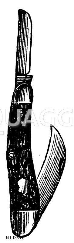 Baumhippe mit Okulierklinge Zeichnung/Illustration
