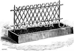 Schlingpflanzengestell mit gitterartig übereinandergelegten Stäben Zeichnung/Illustration