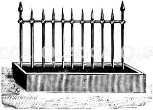 Schlingpflanzengestell mit senkrecht gestellten Stäben Zeichnung/Illustration