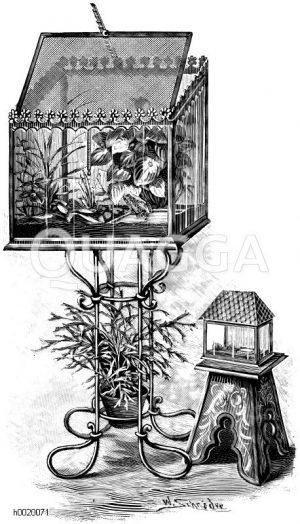 Feucht-warmes Terrarium