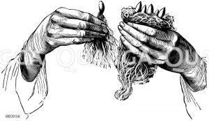 Einlegen der Kaime zum Treiben in Moos Zeichnung/Illustration