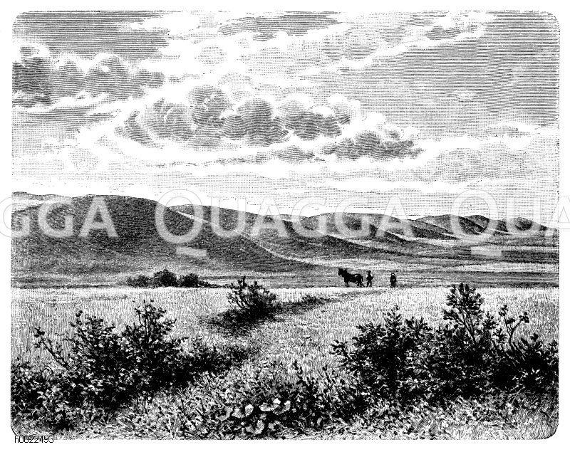 Moränenlandschaft bei Neu-Rosow in Pommern (Stettin) Zeichnung/Illustration