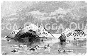Eisfjord auf Westspitzbergen Zeichnung/Illustration
