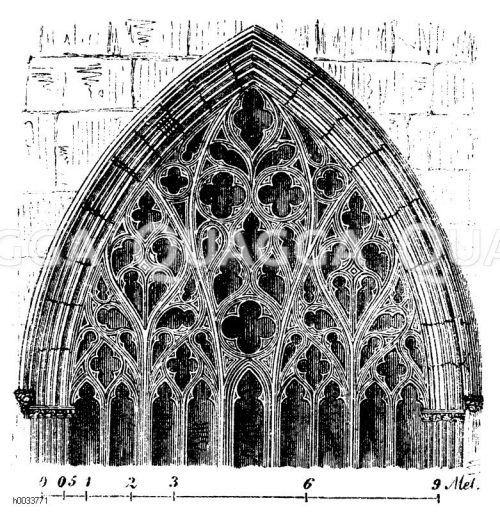 Verschiedene archives quagga illustrations for Fenster englisch