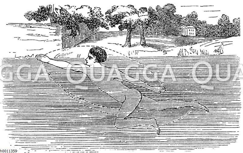 Schwimmen: Kraulen Zeichnung/Illustration