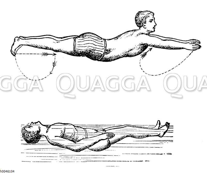 Schwimmen und Rückenschwimmen Zeichnung/Illustration