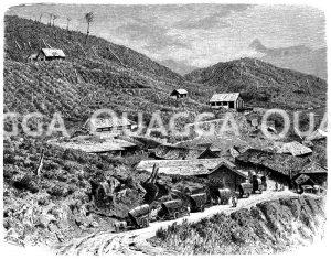 Kaffeeplantage auf Ceylon Zeichnung/Illustration