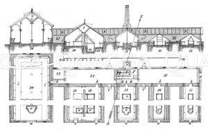 Orangeriehaus. Grundriss und Querschnitt Zeichnung/Illustration