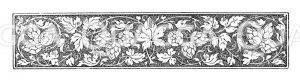 Ornament: Hopfen Zeichnung/Illustration