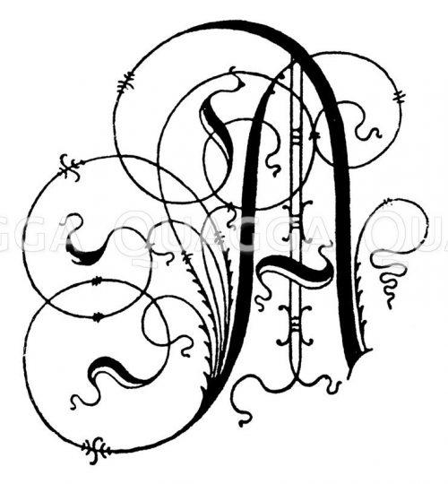Alphabete, Schriftzeichen