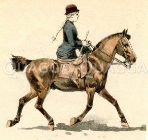 Junge Reiterin im Damensitz Zeichnung/Illustration