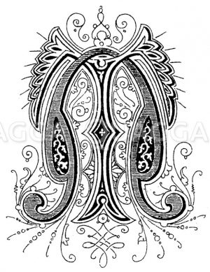 Monogramm TN Zeichnung/Illustration