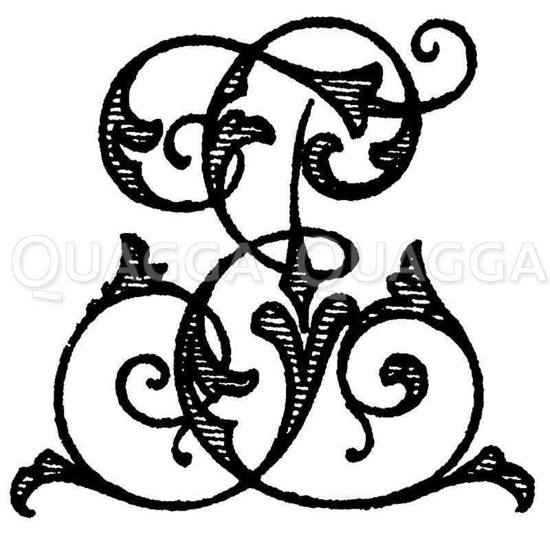 Monogramm TE Zeichnung/Illustration