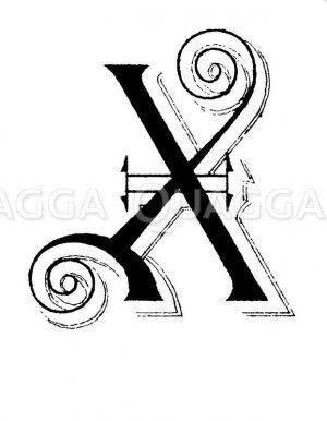 Buchstabe X