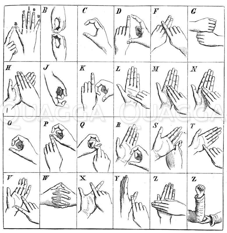 Fingeralphabet Zeichnung/Illustration