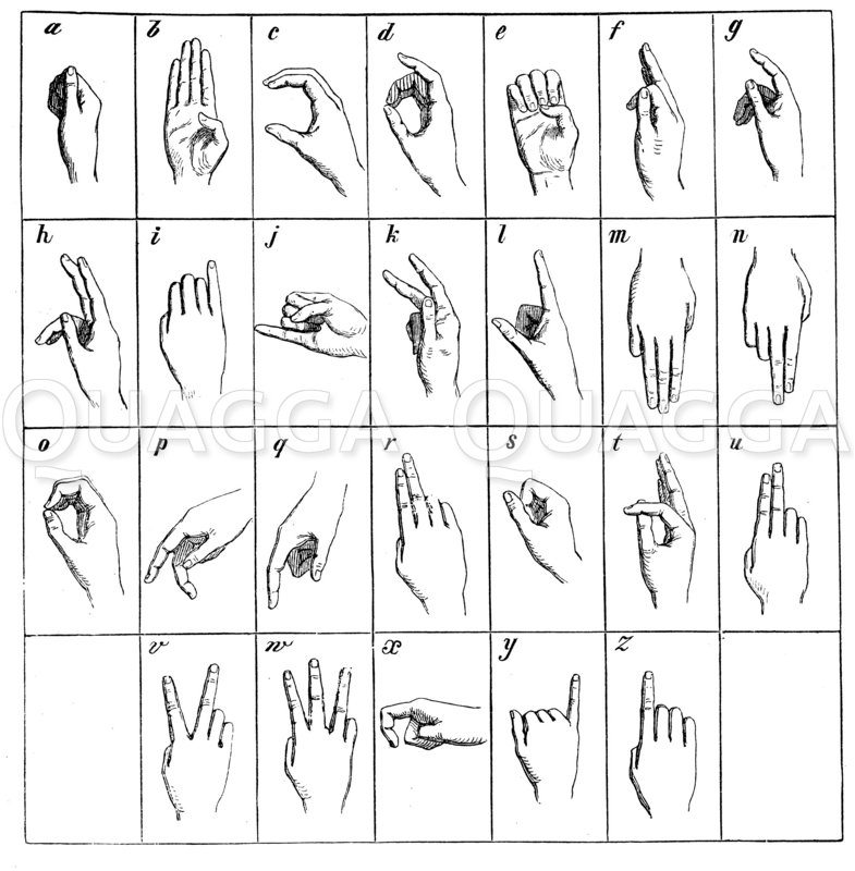 Fingeralphabet Zeichnung/Illustration