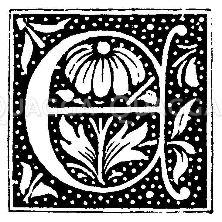 Buchstabe E Zeichnung/Illustration