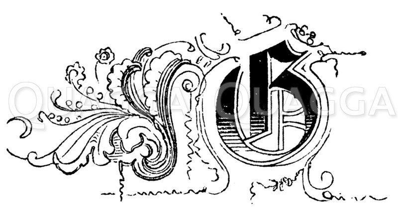 Buchstabe G Zeichnung/Illustration