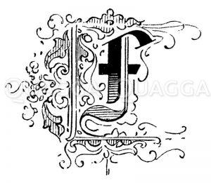 Buchstabe F Zeichnung/Illustration