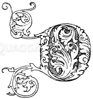 Gotische Unzialschrift: Buchstabe D. Gotisches Initial aus dem Jahr 1494. Zeichnung/Illustration
