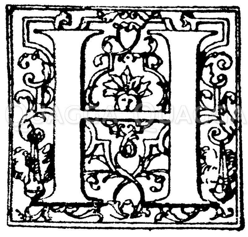 Lateinische Renaissanceschrift: Buchstabe H. Initial aus der Barockzeit. Französisch. (Hrachowina) Zeichnung/Illustration