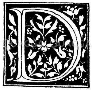 Lateinische Renaissanceschrift: Buchstabe D. Initial. Italienische Renaissance. (Formenschatz) Zeichnung/Illustration