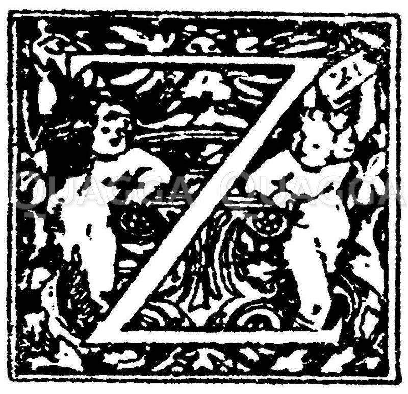 Lateinische Renaissanceschrift: Buchstabe Z. Initial aus einem reichverzierten Renaissancealphabet