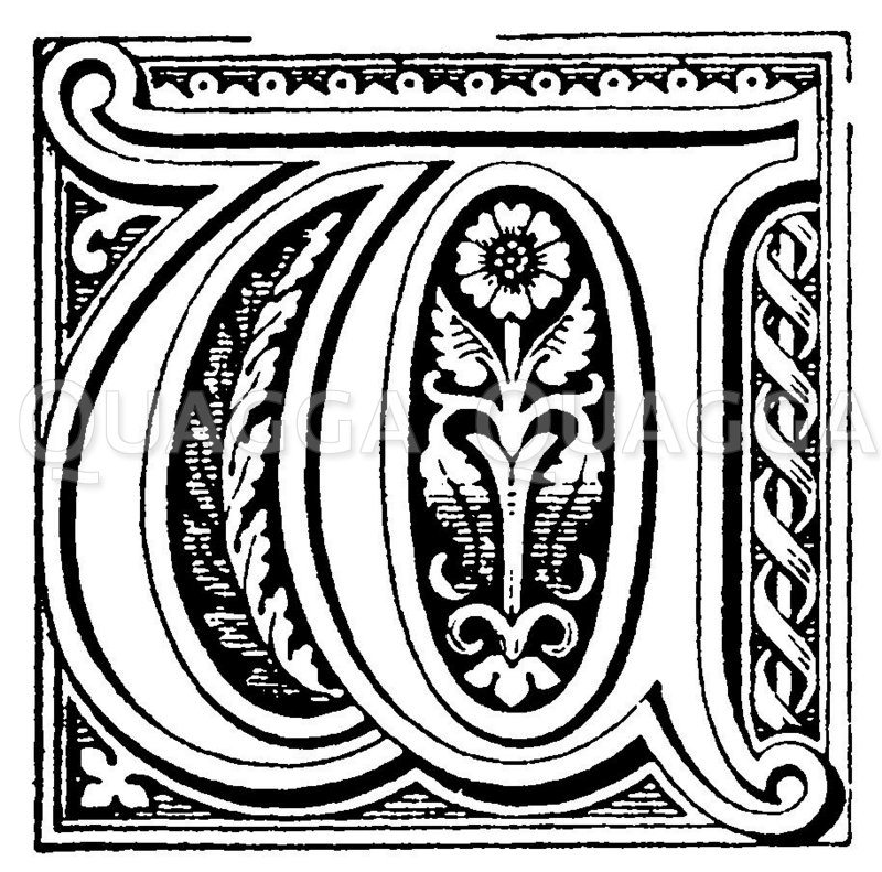 Buchstabe W Zeichnung/Illustration