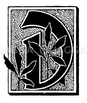 Initiale: Buchstabe D Zeichnung/Illustration