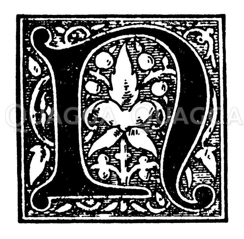 Initiale: Buchstabe N Zeichnung/Illustration