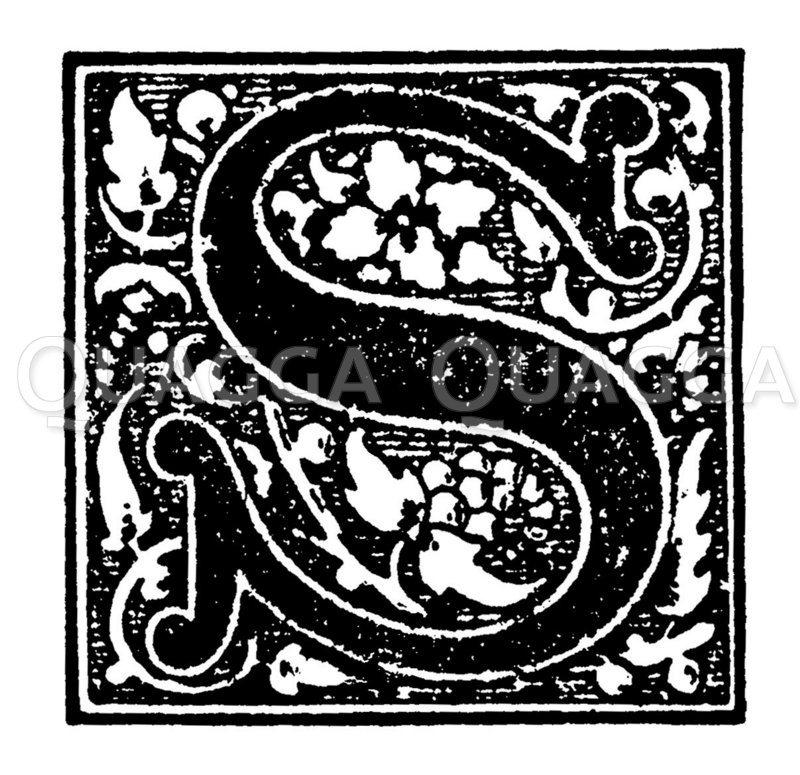 Initiale: Buchstabe S Zeichnung/Illustration