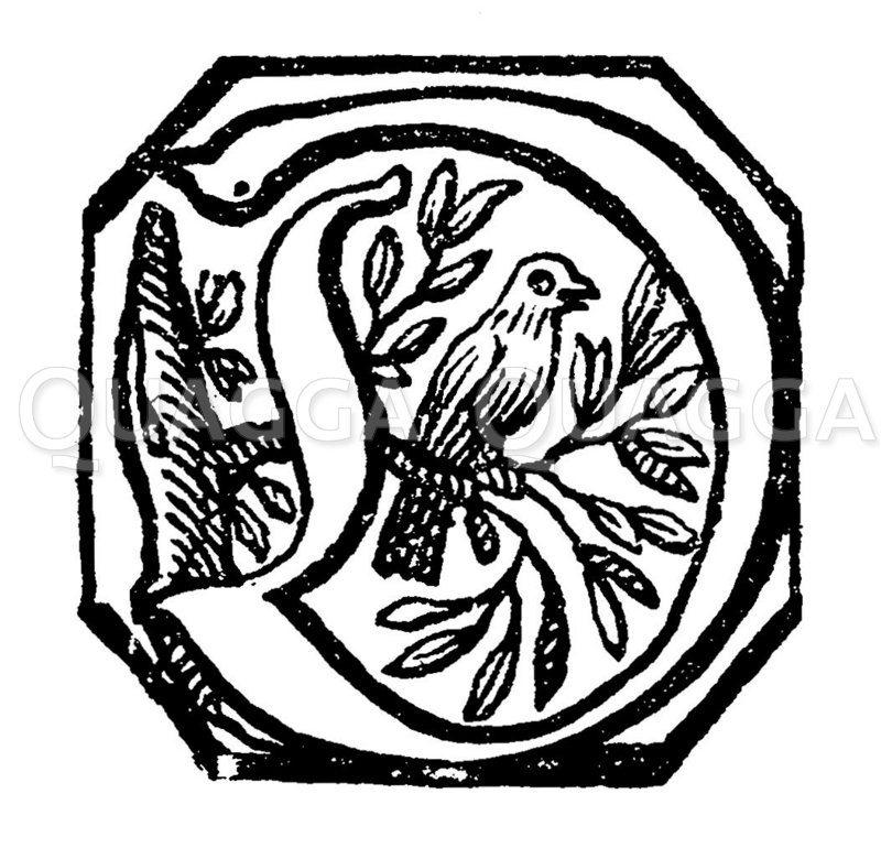 Inital D aus dem 'Poetischen Trichter' des  17. Jahrhunderts Zeichnung/Illustration