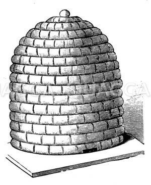 Geflochtener Bienenkorb Zeichnung/Illustration