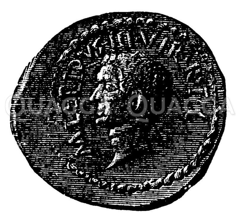 Lepidus. Münzporträt. Nach Imhoof-Blumer Zeichnung/Illustration