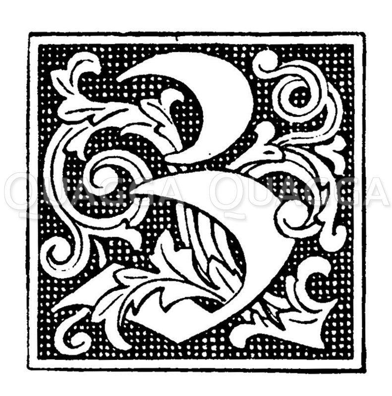 Buchstabe Z Zeichnung/Illustration