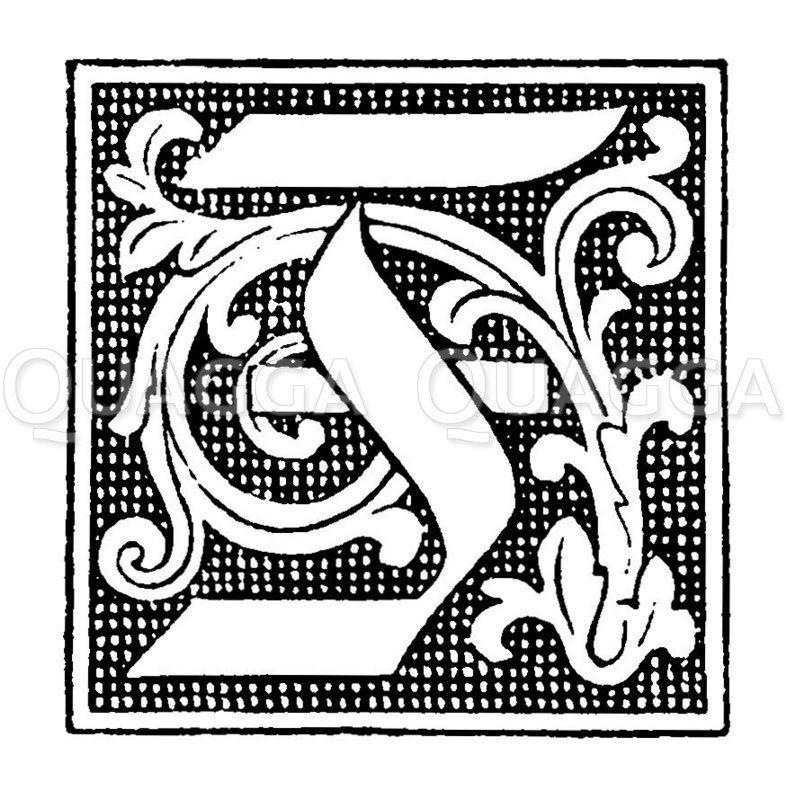 Buchstabe T Zeichnung/Illustration