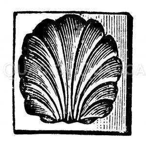 Butterform aus Holz Zeichnung/Illustration
