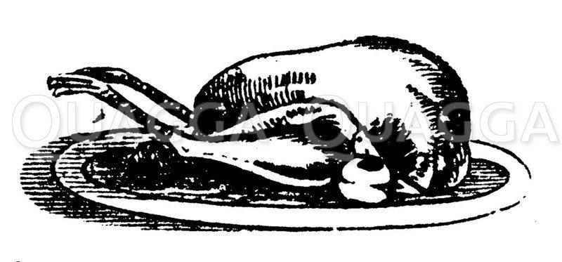 Gebratener Fasan Zeichnung/Illustration