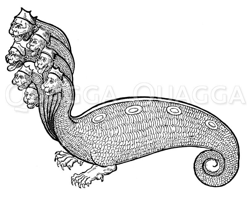 Hydra monstrosa