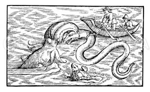 Fischfang mit einem indianischen Jagdfisch Zeichnung/Illustration