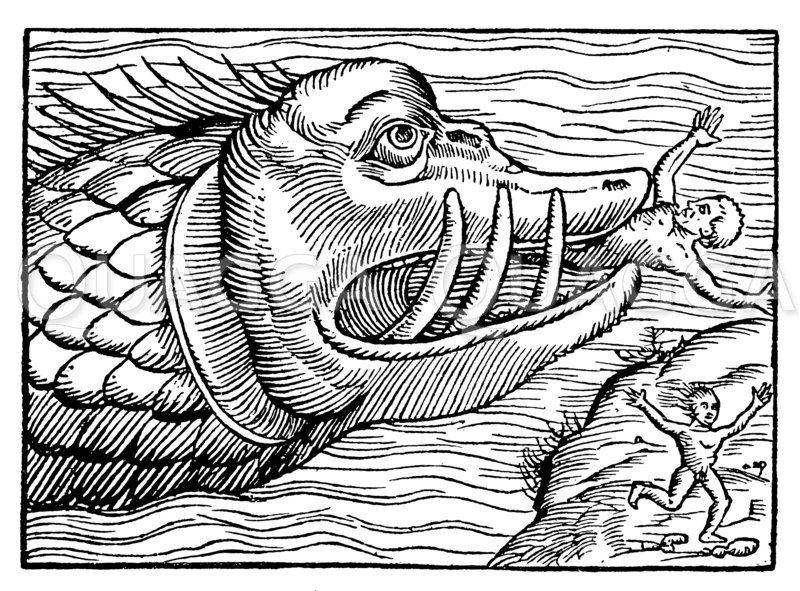 Meeresungeheuer Zeichnung/Illustration
