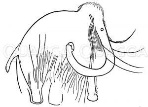 Felszeichnung eines Mammuts Zeichnung/Illustration